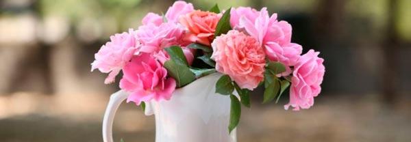 Как сделать срезанные цветы долгожителями