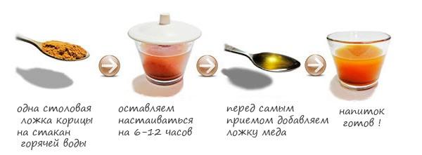 Полезные свойства мёда и корицы