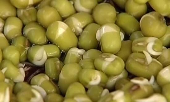 Что приготовить из бобовых