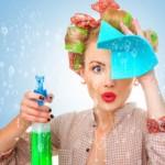 25 интересных фактов о домохозяйках