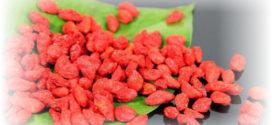Ягоды годжи полезные свойства и противопоказания