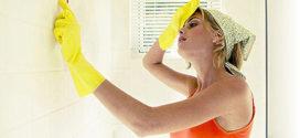 Как предотвратить, избавится от сырости и плесени в помещении